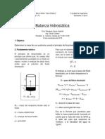 Balanza hidrostatica