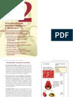 02-Arteriosclerosis - Infartos - Apoplejias
