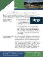 Carne_de_Conejo.pdf