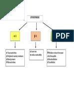 Epinephrine Mechanism of Action