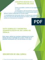 DEFINICIÓN Y CONCEPTOS BÁSICOS DE LA MORFOLOGÍA DEL.pptx