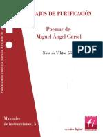Trabajos de Purificación - Miguel Ángel Curiel.pdf