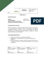 Manual Funciones Director TI