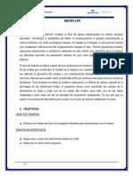 Informe Modflow