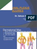 2. Hafizah Binti Mohd Hoshni Musculoskeletal Anatomy Brachial Plexus Injuries