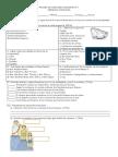 291674894-Prueba-de-Historia-Los-Romanos.docx