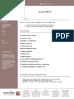 audit-interne.pdf