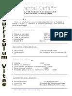 CURRICULUM modelo.doc