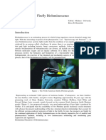 2.-Firefly-bioluminiscense.pdf