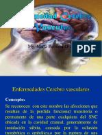 Cerebro Vascular