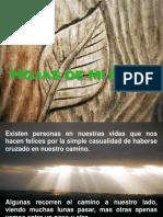 45 - HojasDeMiArbol