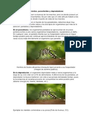 ¿En qué se diferencia el parasitismo del cuestionario de depredación?