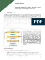 sistema_neuroendocrino_hipotalamo_e_hipofisis.pdf