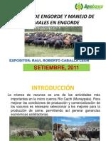 Sistemas de Engorde y Manejo de Animales Exposicion