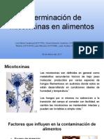 Determinación de Micotoxinas en Alimentos