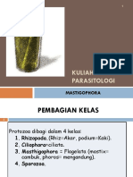 Kuliah 3. Parasitologi Ump Mastigophora