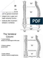 Spine Lecture