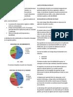 PINTURA EN POLVO RV.docx