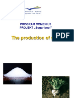 The Production of Sugar