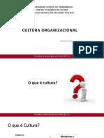 Aula2_Culturaorganizacional_2017