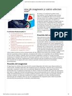 ¿Los suplementos de magnesio y calcio afectan la presión arterial_ _ Muy Fitness.pdf
