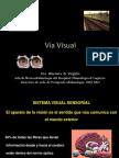 01 via Visual de Virgiliis