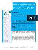 2016 Lake County accidental overdose death report