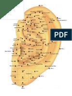 Mapa Auricular de Neves.pdf