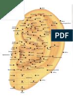 Mapa de Auriculoterapia