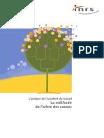Árvore de Causas - Frances