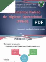 AULA PPOH POP_1.pdf