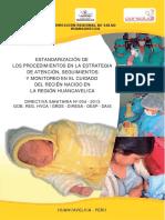 DIRECTIVA AIS RECIEN NACIDO-HVCA.pdf
