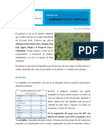 Informe-Garbanzo 2016.pdf