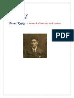 Procesul ,Kafka