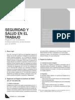 Registro de Auditores Independientes de SST Ante El MTPE