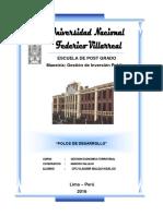 POLOS DE DESARROLLO.docx