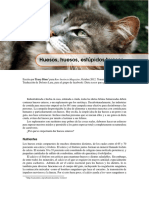 Alimentación natural en el gato doméstico