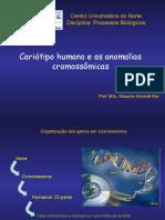 Cariotipo e Anomalias Cromossomicas