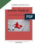 Apostila Trabalhista..pdf
