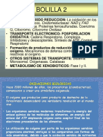 Oxido-reduccion PPT
