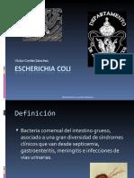 12 Escherichiacoli 120323235433 Phpapp01