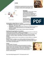 Sensopercepción.docx