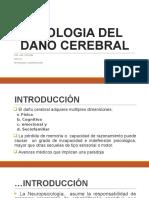 d.etiologia Del Daño Cerebral