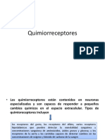 quimioreceptores diapositivas