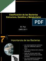 clasificación de las bacterias