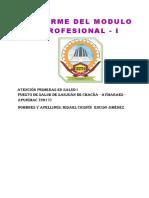 Informe Chacña Final
