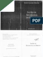Lições de Sociologia Do Direito - Alysson Mascaro
