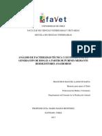 Analisis de Factibilidad Tecnica y Economica de La Generacion de Biogas a Partir de Purines Mediante Biodigestores Anaerobios