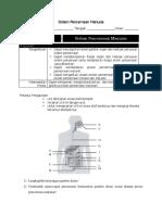 LKS Sistem Pencernaan Revisi