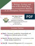 Rice Bug-Taxo, Bio, Eco & Mgt.